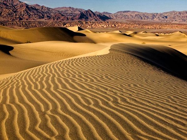 Пески Синая - самые большие и высокие дюны